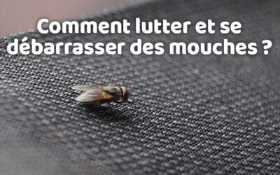 Comment lutter et se débarrasser des mouches ?