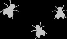 mouches vectoriel
